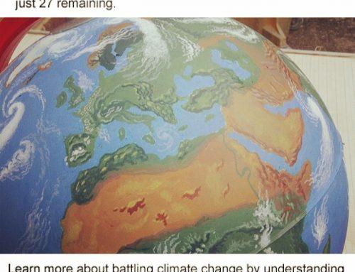 Environmental Fact: Global Warming
