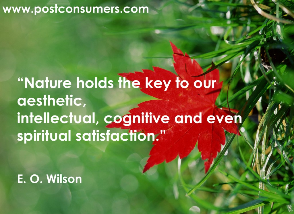 Quotes On Nature Archives Page 5 Of 5 Postconsumers