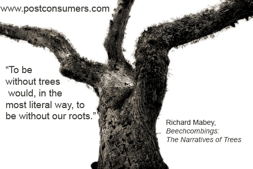 Quotes About Trees For Arbor Day Postconsumers