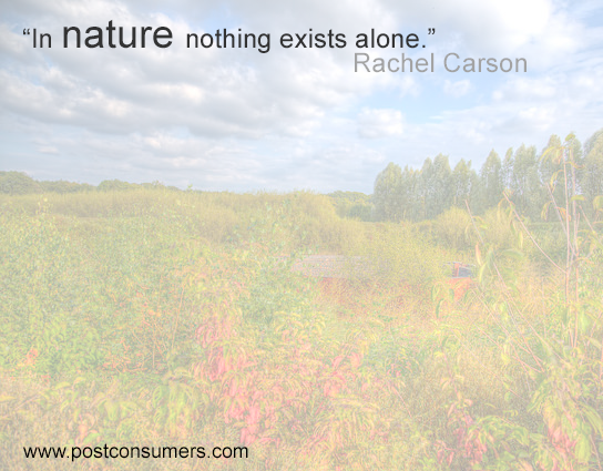 Rachel Carson Quote Nothing Exists Alone Postconsumers Custom Rachel Carson Quotes