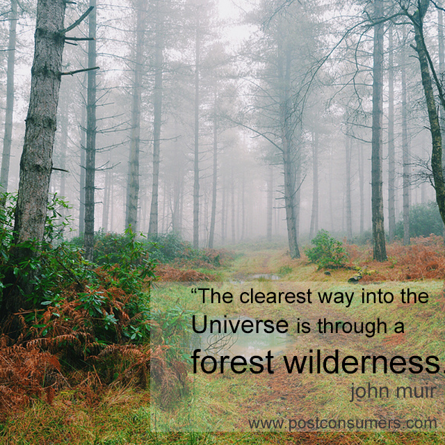 Favorite John Muir Quotes The Universe And The Forest Postconsumers