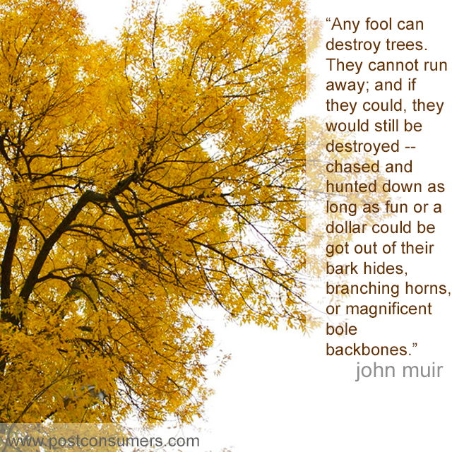 Favorite John Muir Quotes Fools And Trees Postconsumers