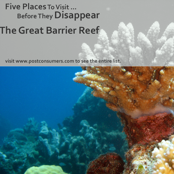 Places To See Before They Disappear The Great Barrier Reef