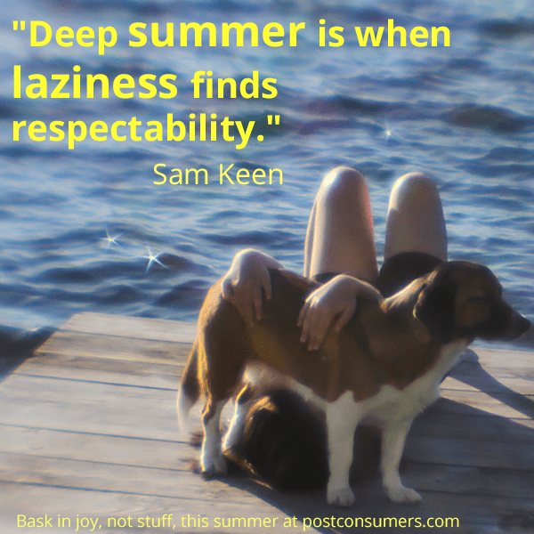 Favorite Summer Quotes On Laziness And Responsibility Postconsumers