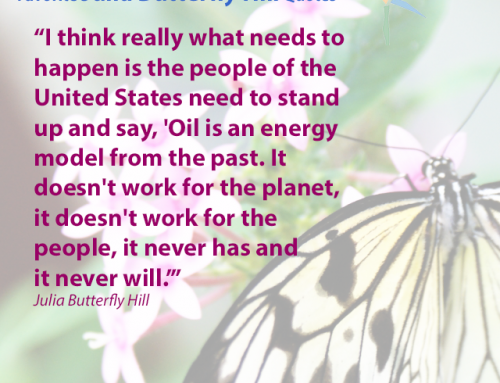 Favorite Julia Butterfly Hill Quotes: Stand Up Against Oil