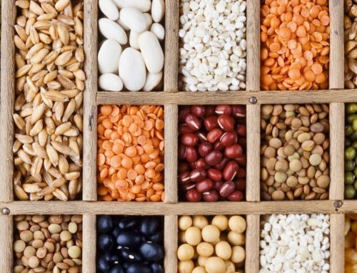 Combatting GMOs by Storing Your Own Seeds